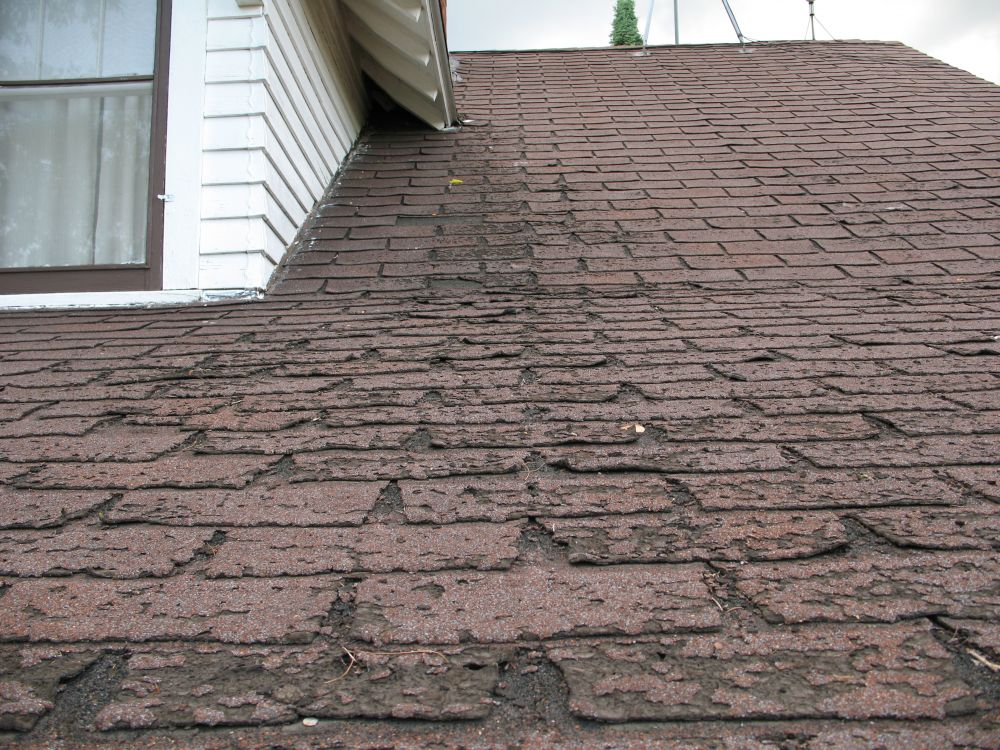 Roof and Shingle Repairs